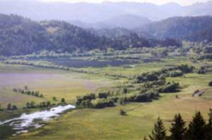 willits_valley_2